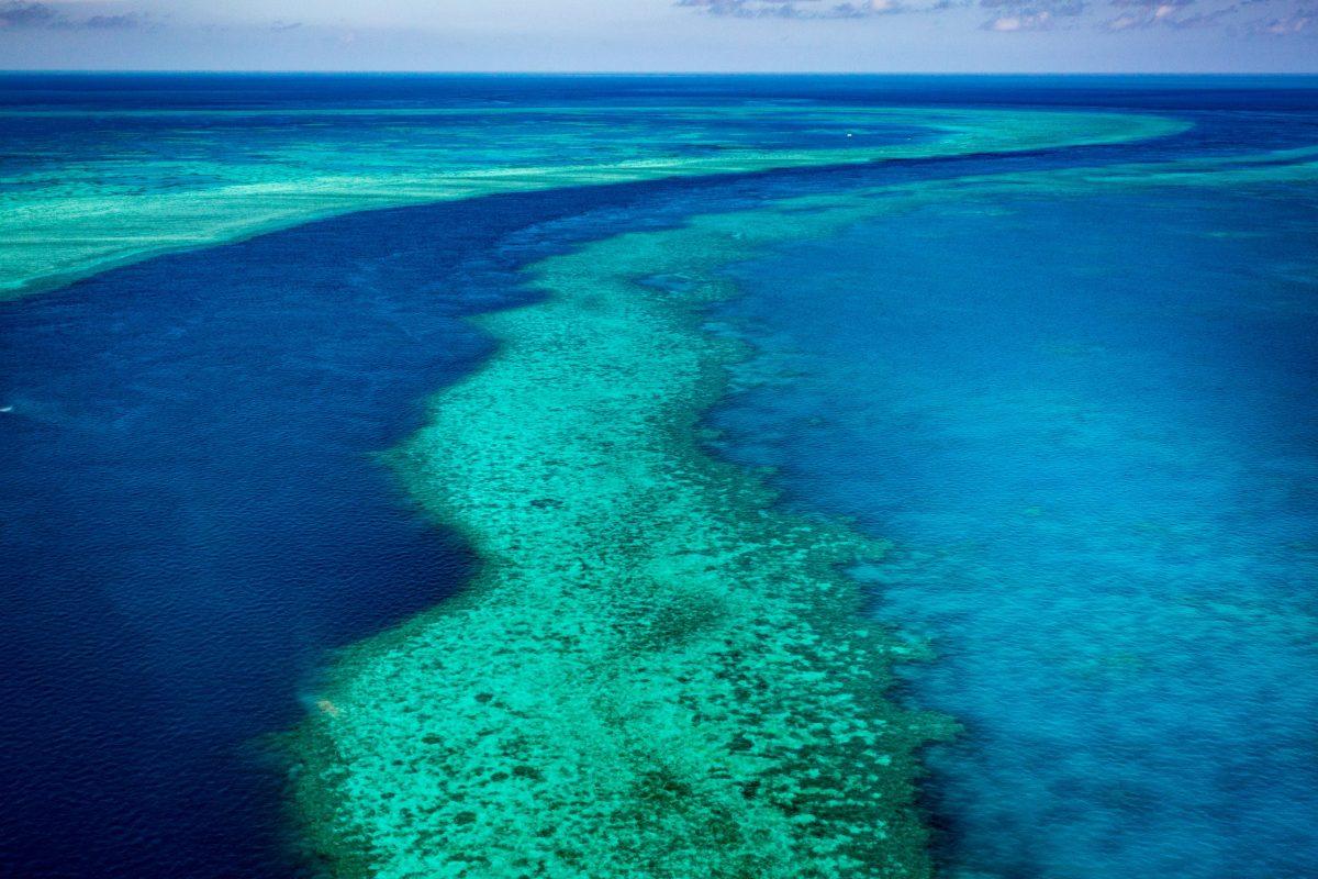 Reef_02_Aerial