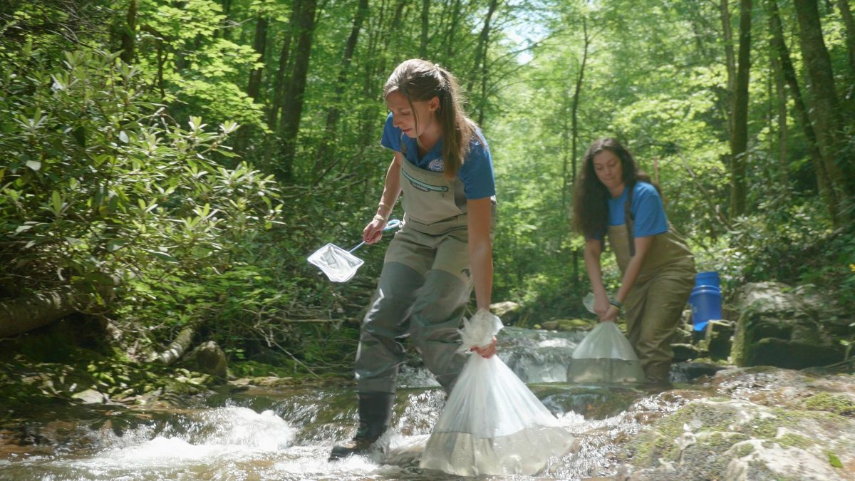 Reintroduction Biologist Meredith Harris and Reintroduction Assistant Hayley Robinson carry bags with baby trout