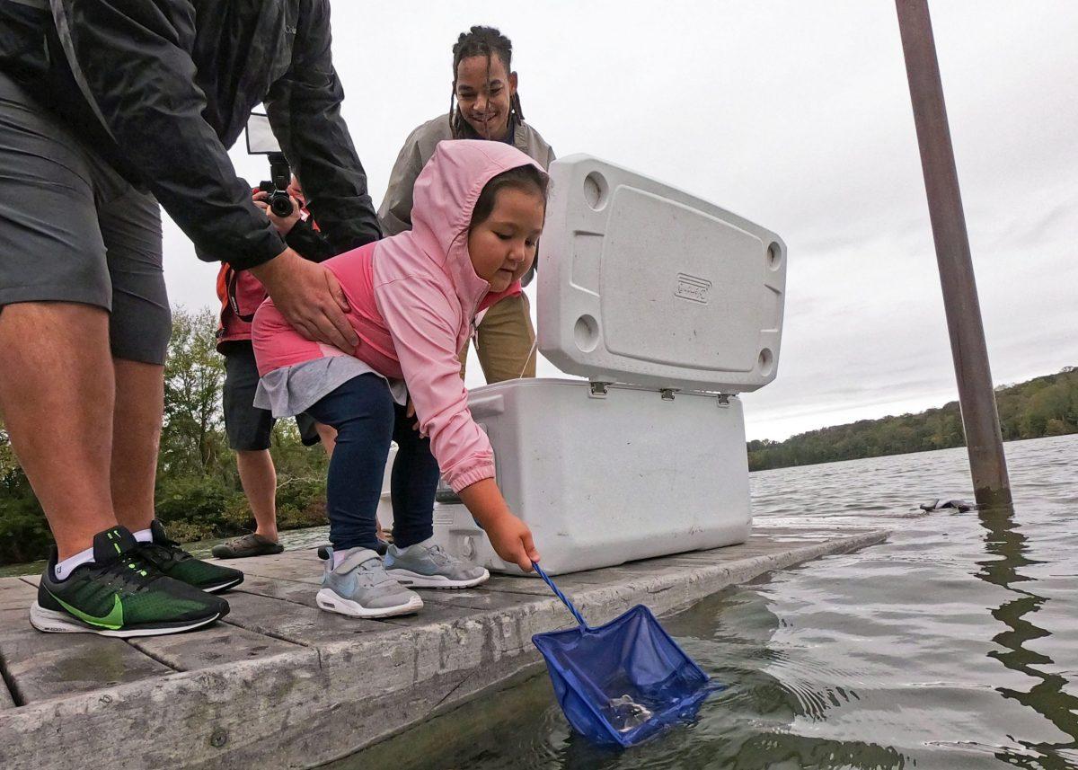 Lake Sturgeon Release 101219