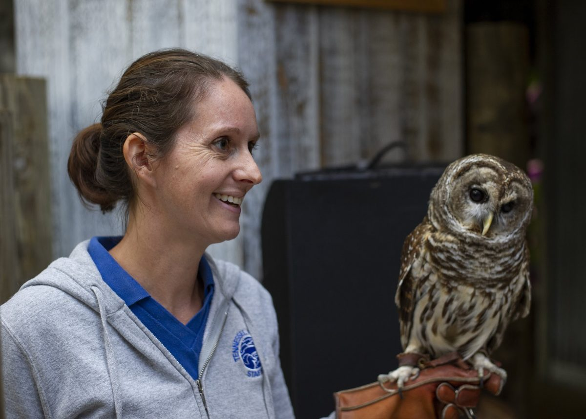 Barred Owl with keeper