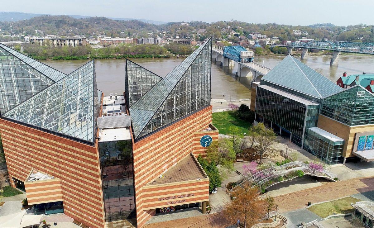 aerial view of Tennessee Aquarium buildings