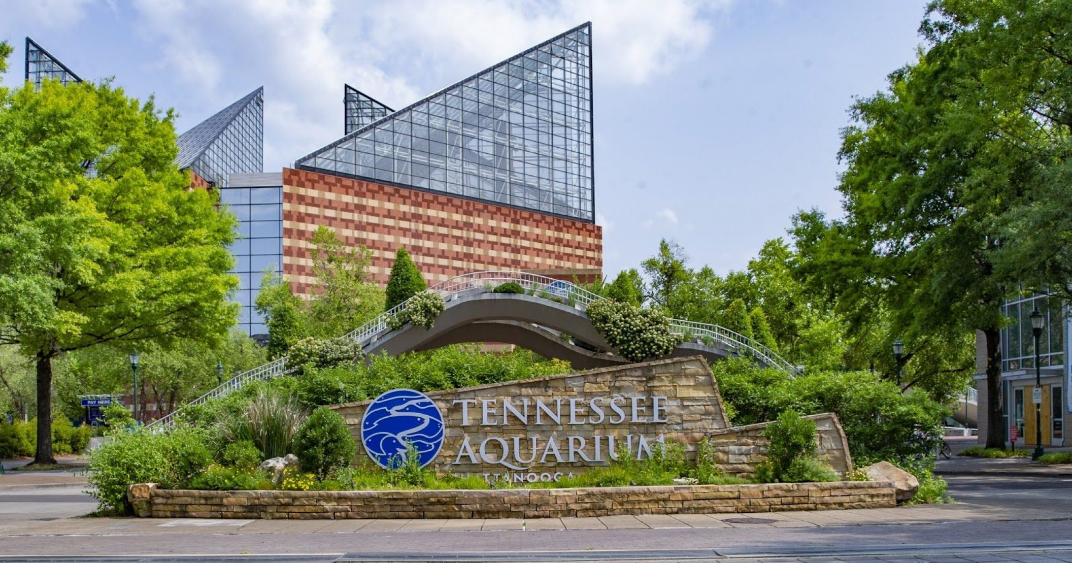 Tennessee Aquarium Implements Reduction in Force as ...