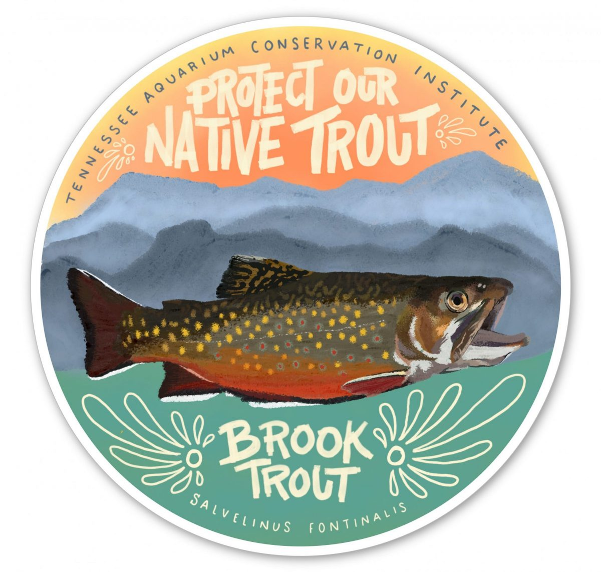 illustration of a brook trout with text - Protect Our Native Trout