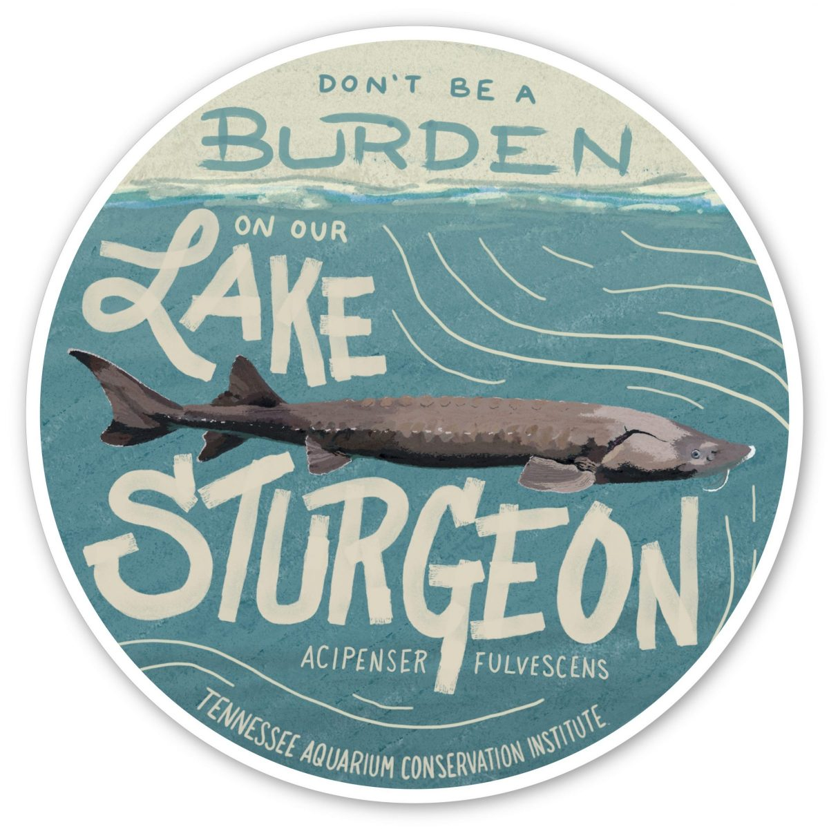 illustration of a Lake Sturgeon with wording Don't be a burden on the Lake Sturgeon