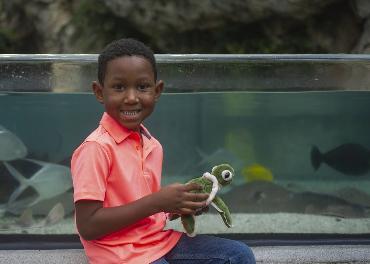boy with stuffed turtle in front of tank