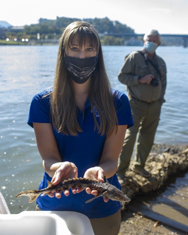 scientist holding juvenile lake sturgeon