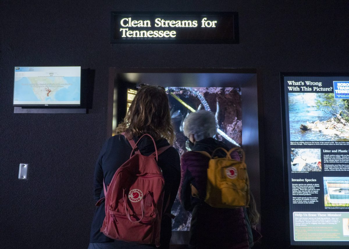 Two adults viewing Clean Streams exhibit