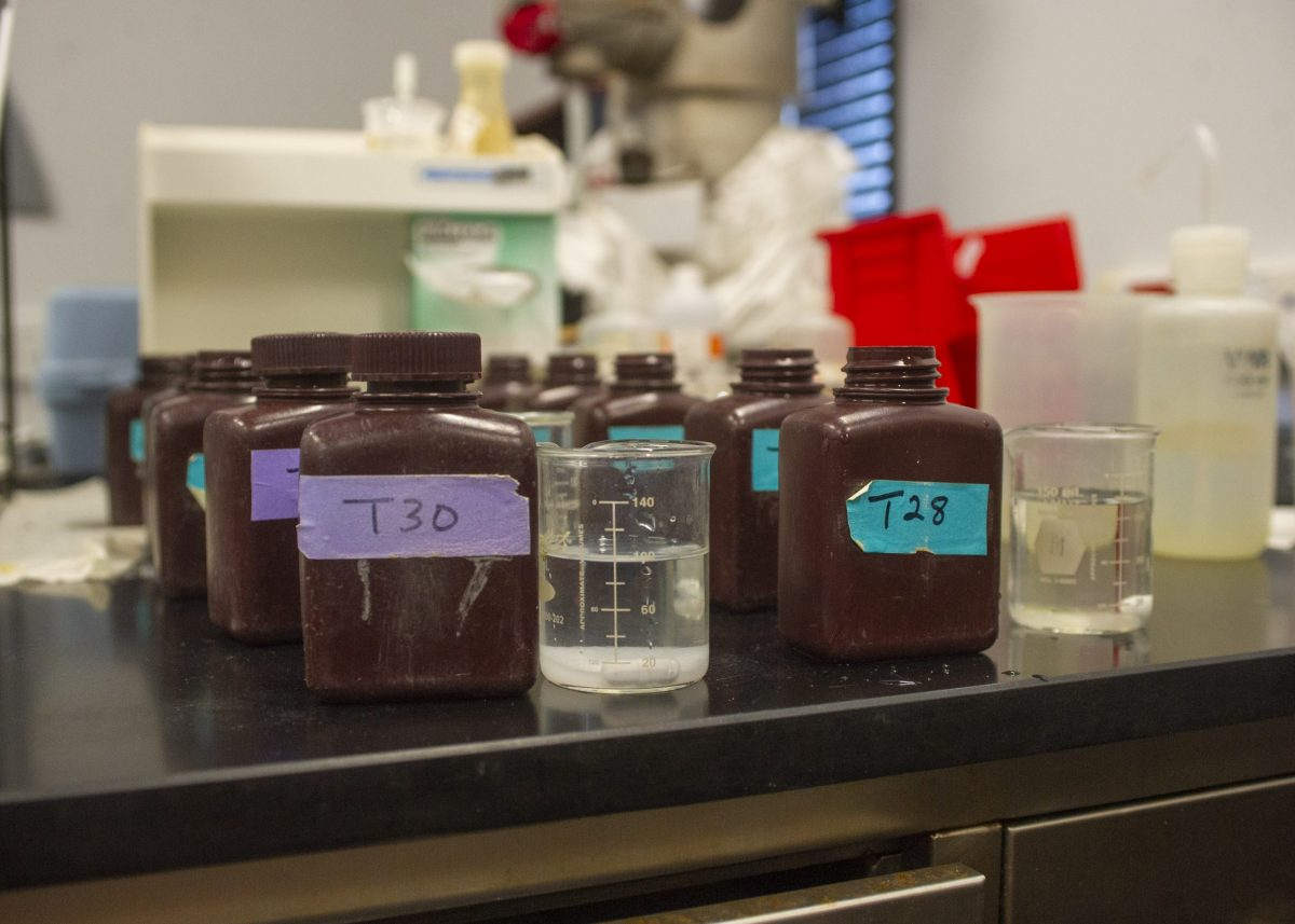 Water samples from various exhibits await testing in the Aquarium's Water Quality Lab