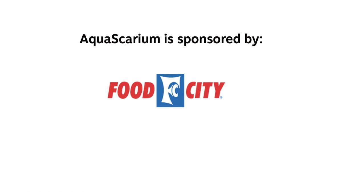 AquaScarium is sponsored by Food City
