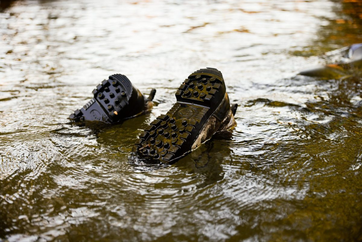 A snorkeler's boots stick up out of the waters of Holly Creek