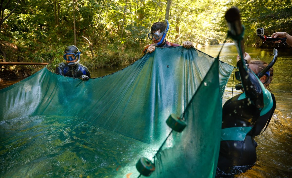 Scientists life a seine net from the water to collect Bridled Darters from Holly Creek