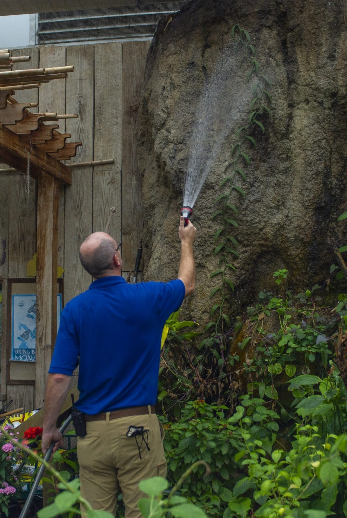 Horticulturist II Austin Prater waters plants, one of the many duties he undertakes each morning before guests arrive at the Aquarium