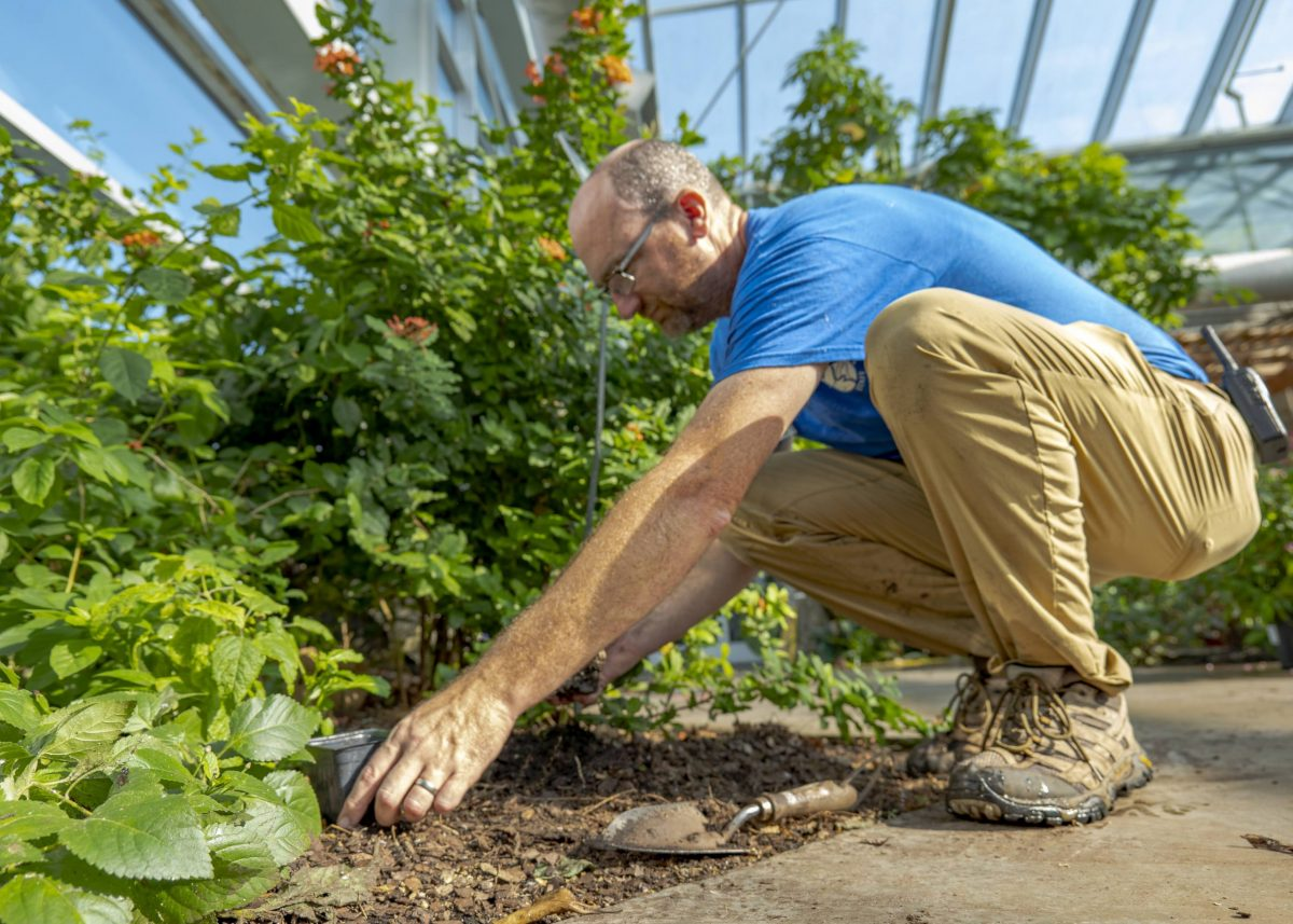 Horticulturist II Austin Prater prepares to plant a new addition to the Butterfly Garden